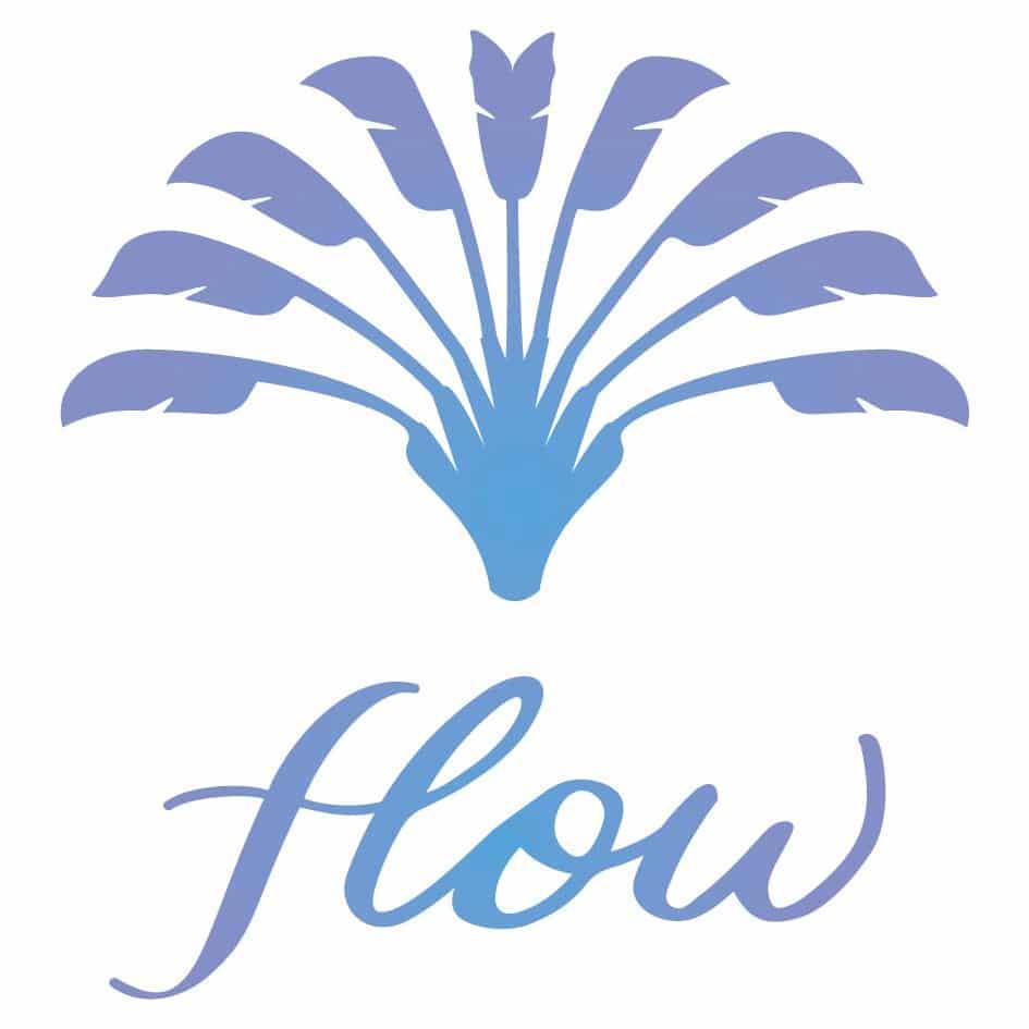 Flow Kinesiologie Lyon